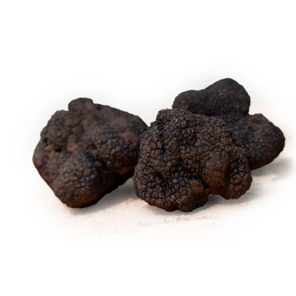precio trufa negra monte